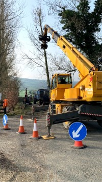 Paul O'Donnell Tree Services - crane used to remove felled tree, Donegal, Ireland